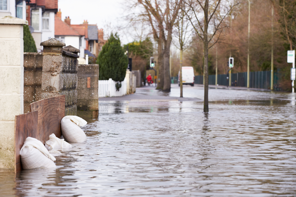 Protecting Your Business in a Natural Disaster